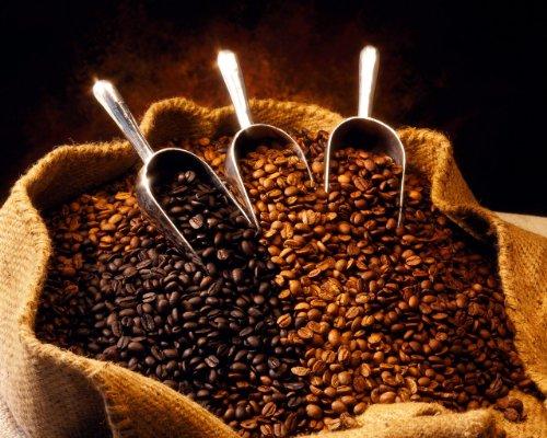 Ethiopian Queen City Harrar Grade 4 Coffee Beans (Medium Roast (Full City +), 2.5 Pounds Whole Beans)