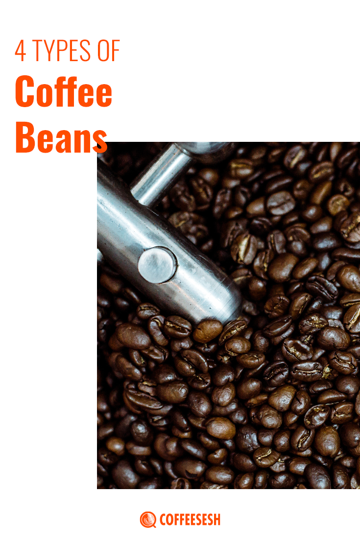 Coffee Basics: A Guide to 4 Types of Coffee Beans