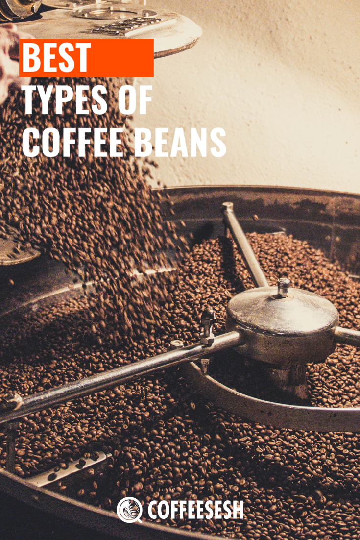 Coffee Basics: 10 Best Types of Coffee Beans