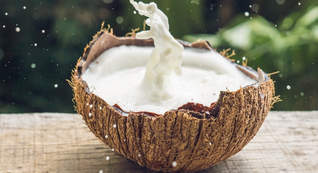 Top 7 Coconut Milk Benefits For You
