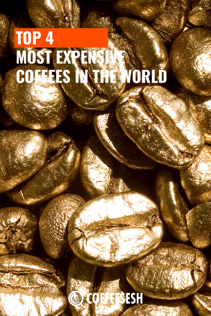 The Top 4 Most Expensive Coffees in the World