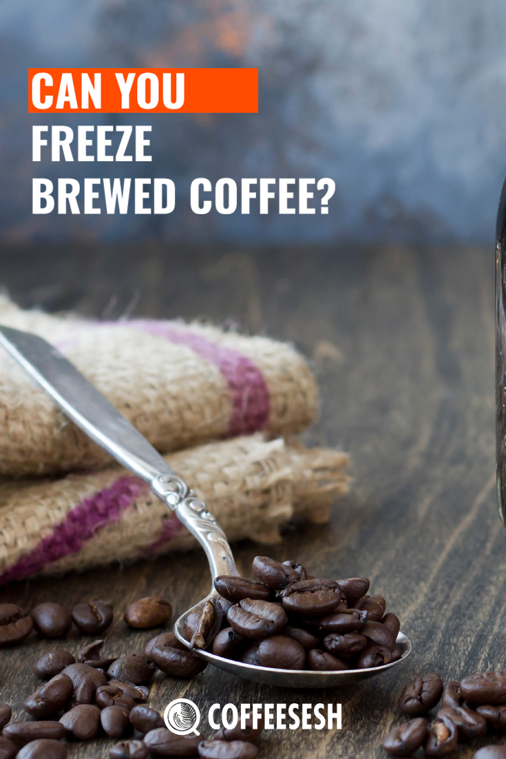 Can You Freeze Brewed Coffee? (Newbie Coffee Guide)
