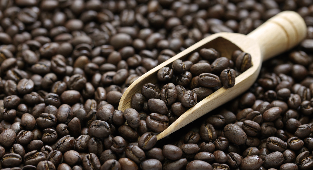 Coffee Inspector Peaberry Coffee Caracolillo