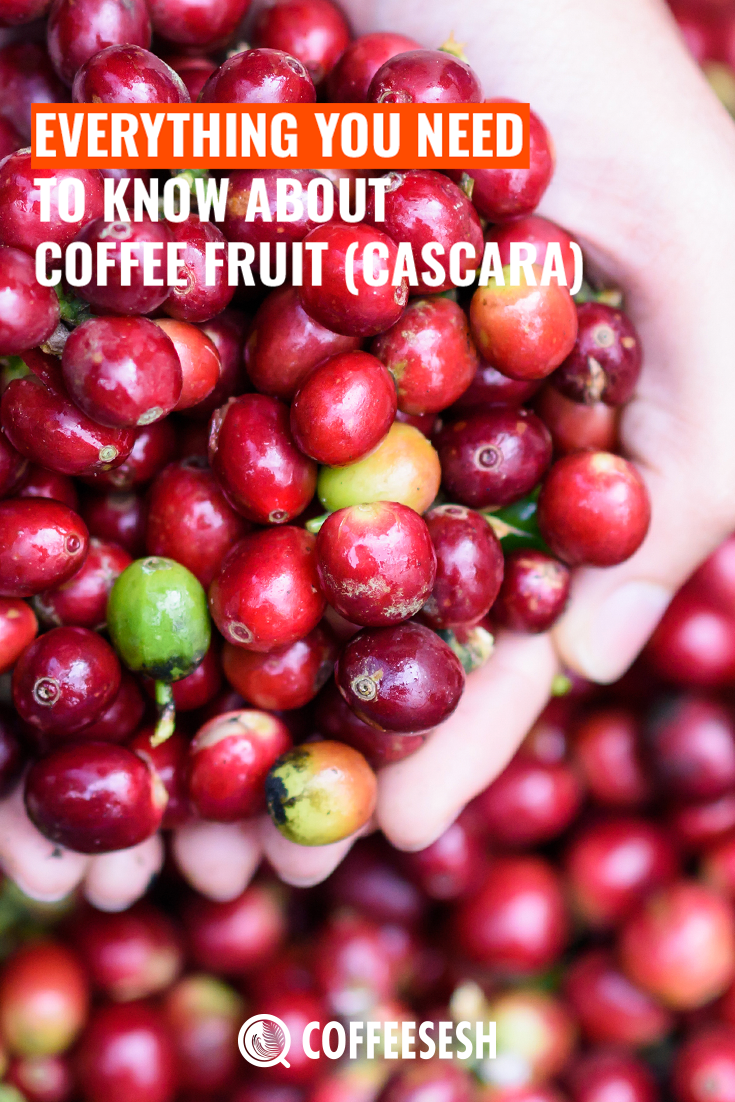 Everything You Need to Know About Coffee Fruit (Cascara)