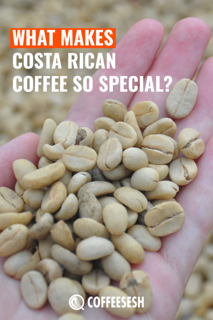 What Makes Costa Rican Coffee so Special? (Costa Coffee Review)