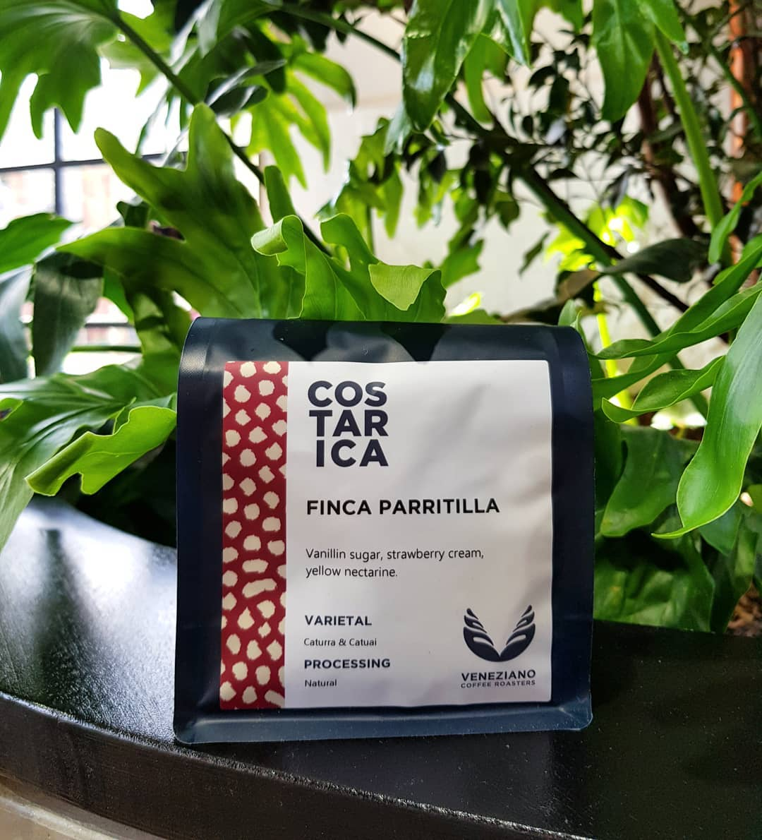 What Makes Costa Rican Coffee so Special