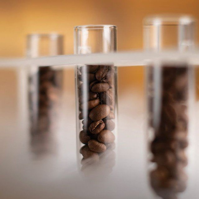When & Why You Should Consider Freezing Coffee Beans