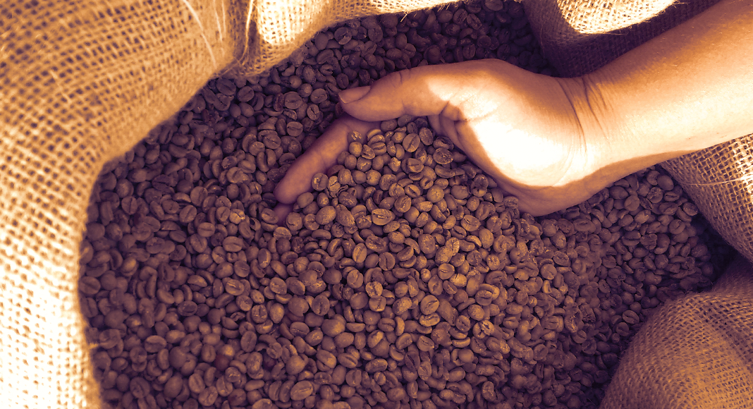 Exploring Brazil's Coffee Culture Cafézinho