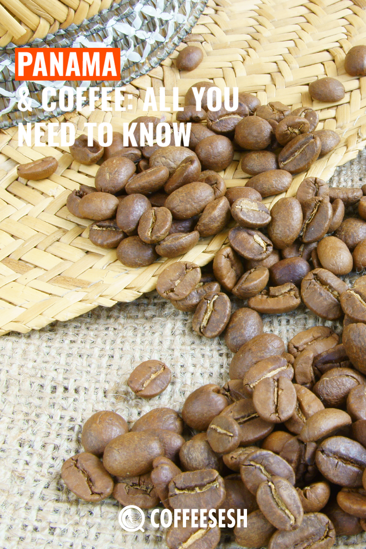 Panama And Coffee: All You Need to Know About Panama Coffee