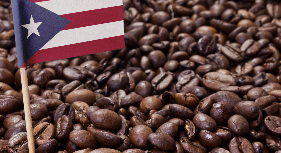 Puerto Rican Coffee Guide Brands More